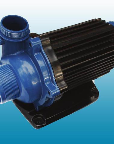 Pompe Blue Eco 240 watts 23 m3/h