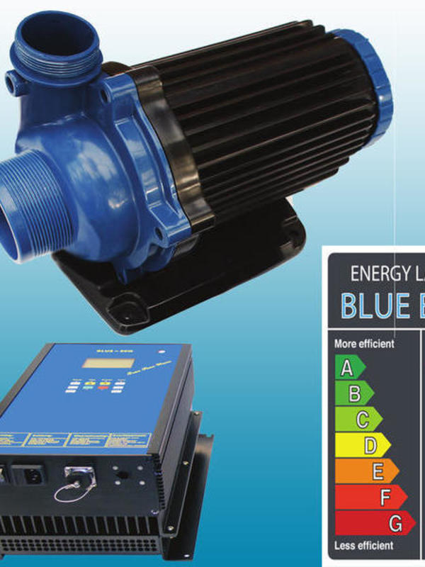 Pompe Blue Eco 900 watts Max 48m3