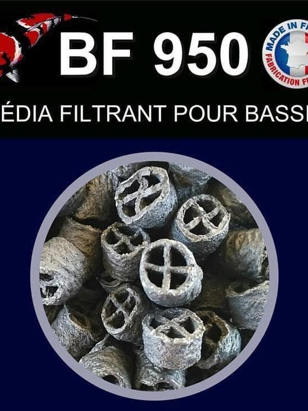 BF 950 100L